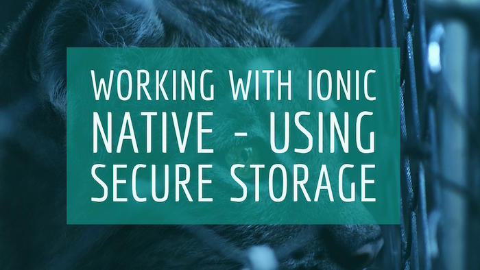 Working with Ionic Native - Using Secure Storage